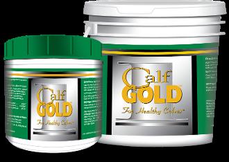 Calf Gold