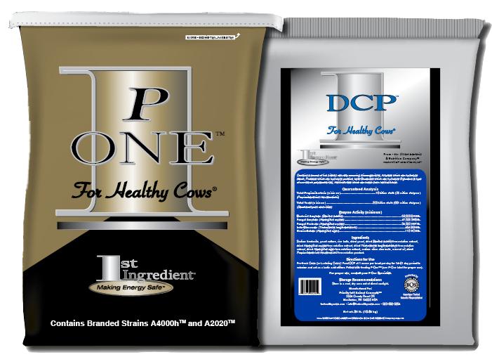 P-One Program
